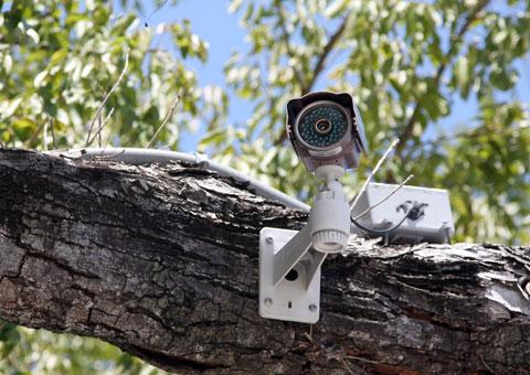 CCTV_questions